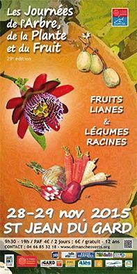 salons art peinture marché de Noël Saint-jean-du-Gard Montpezat Dimanches verts Journées de l'arbre de la plante et du fruit